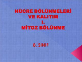 mitoz_boeluenme.ppt