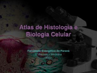 atlas de histologia e biologia celular.ppt