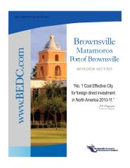 Brownsville Briefing Report - 2011.pdf