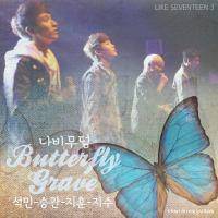 Butterfly Grave - SEVENTEEN (Cover).mp3